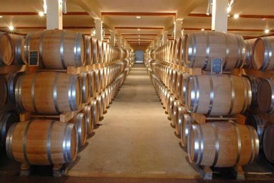discover-wine-slider1